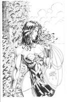 Wonder Woman by Jason Metcafe by JPMayer