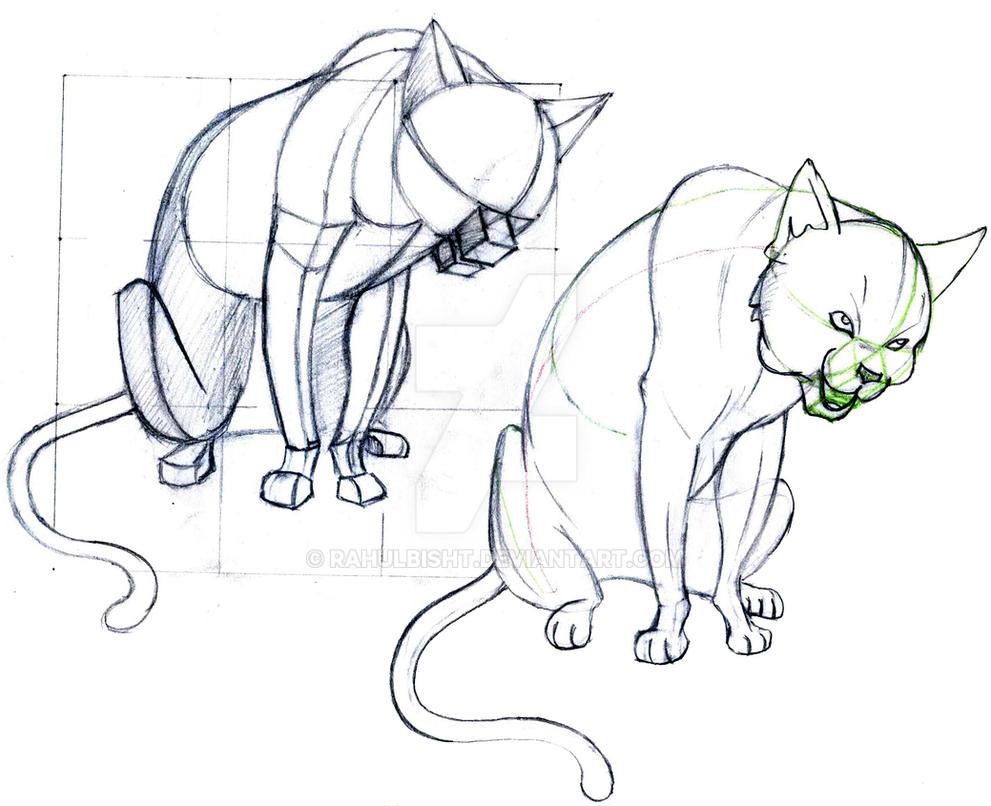 animal anatomy sketch by RahulBisht on DeviantArt