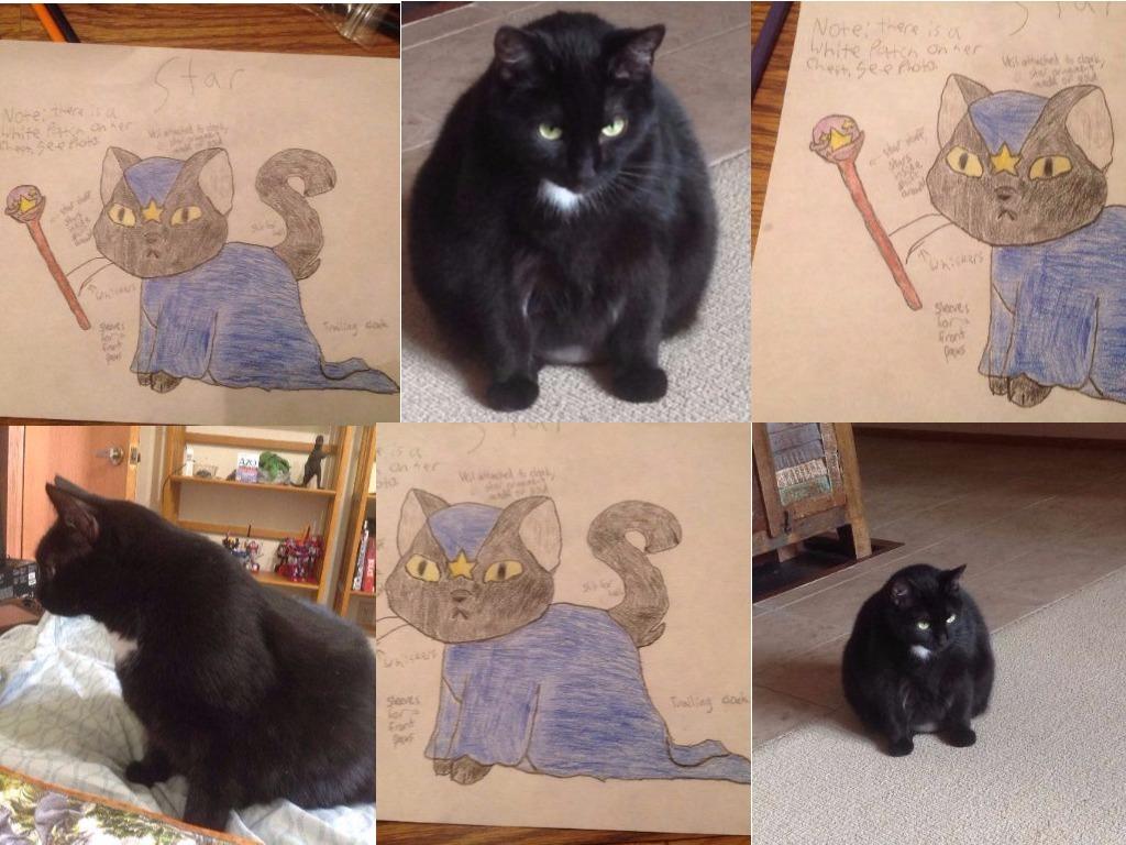 Castle Cats design contest entry: Star by SacredSpirit123