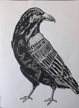 Crow - Pointillism