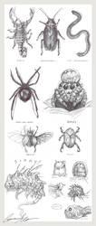 Bug/Abyss Study by Miimochi