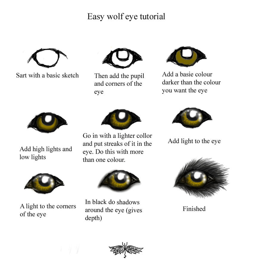 Easy wolf eye turtorial by snorgolwolks on deviantart easy wolf eye turtorial by snorgolwolks ccuart Image collections
