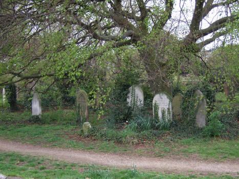 Mill Road Cemetery, Cambridge 004