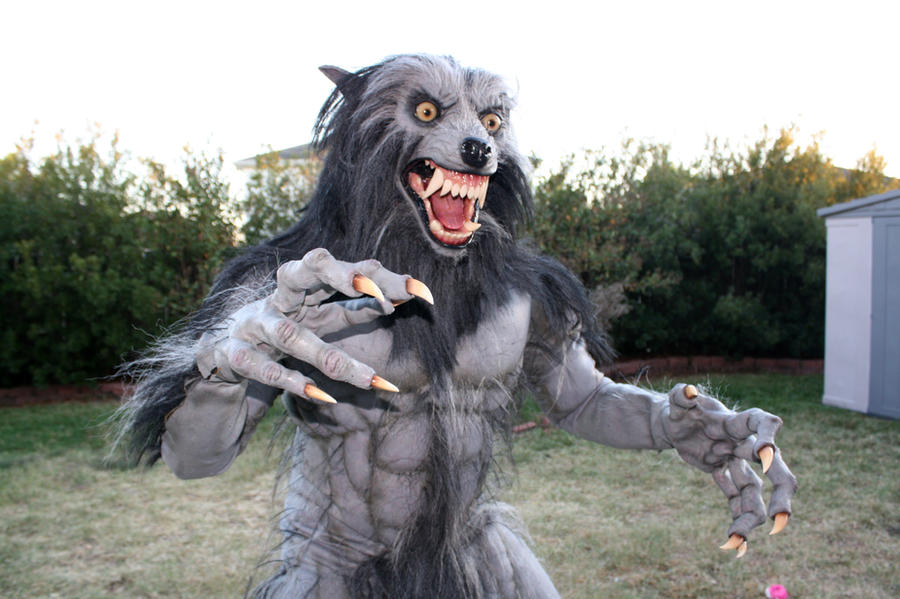 Werewolf Costume 2010 by CReeves76