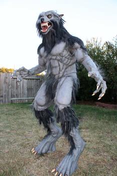 Werewolf Costume 2010-2