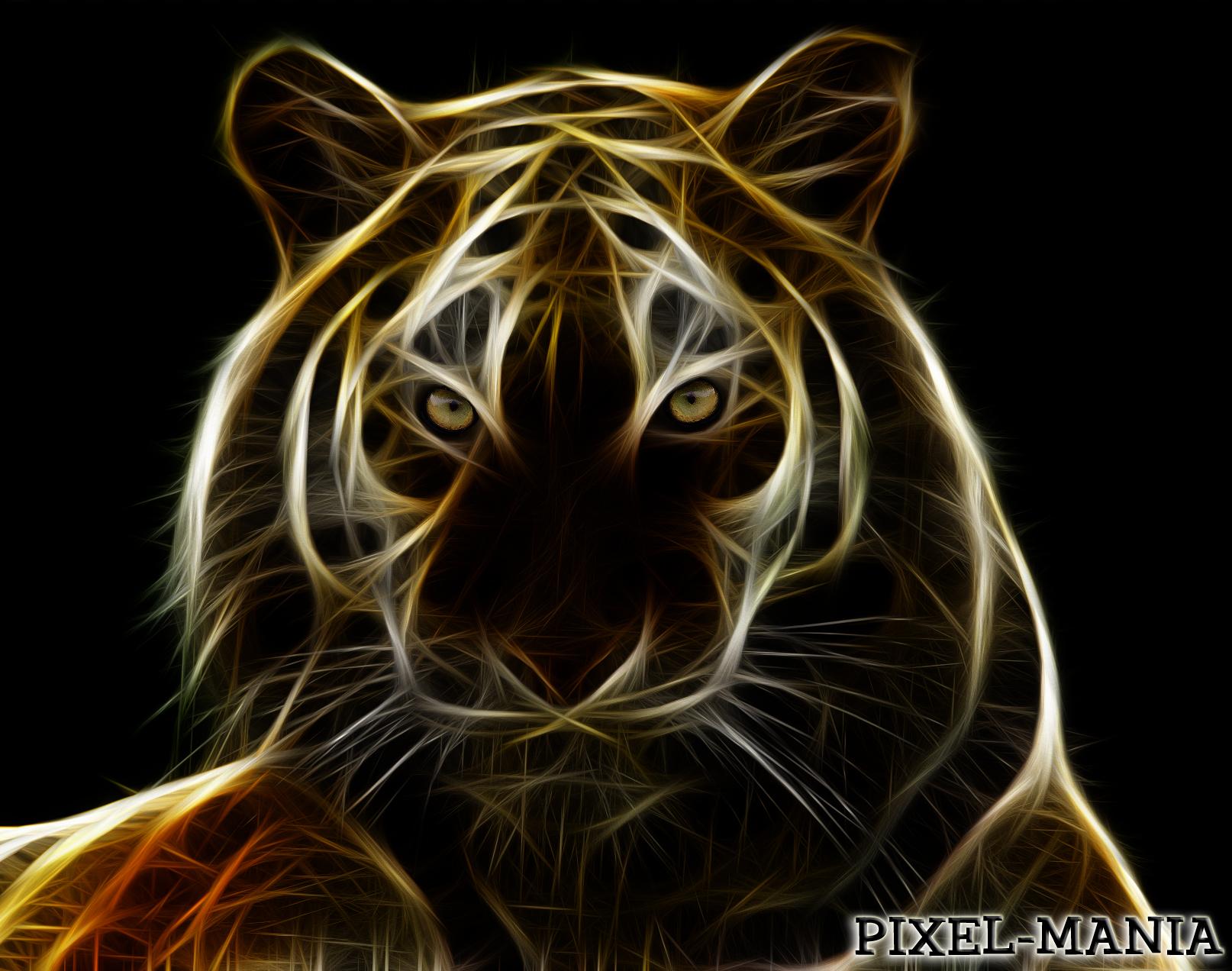 Sheru.. The lion by razr310