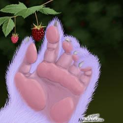 FB - raspberries