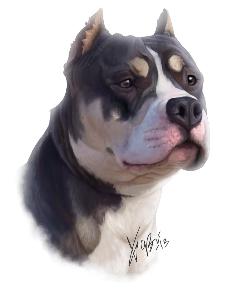Digital Art Black Dog Cute