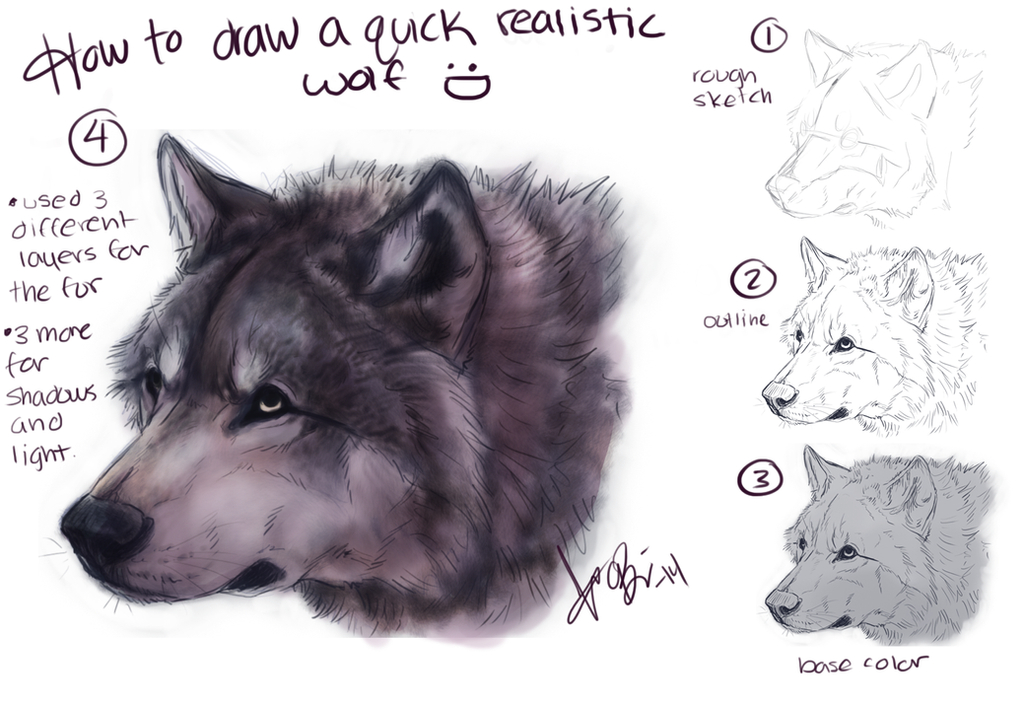 How To Draw: Realistic Wolf by RedEyedDemon on DeviantArt