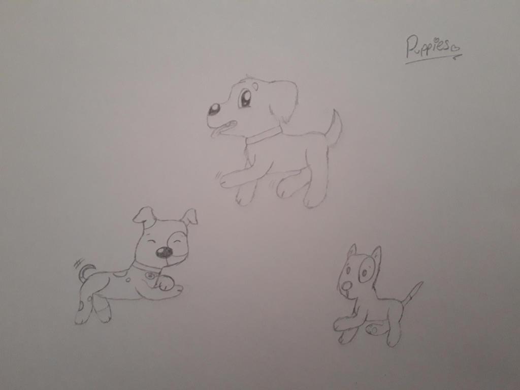 Some pups 'v'  by RainbowHeartPony