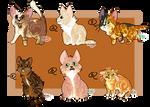 CLOSED - Kittens