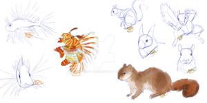 Lionfish - Squirrel