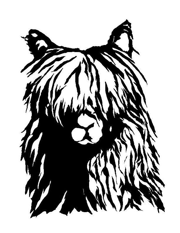 Alpaca by pazazz on DeviantArt