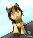 Unnamed Ponysona