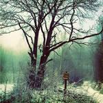 ALONE WINTER by cetrobo