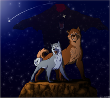 Shooting star by Raccoon5