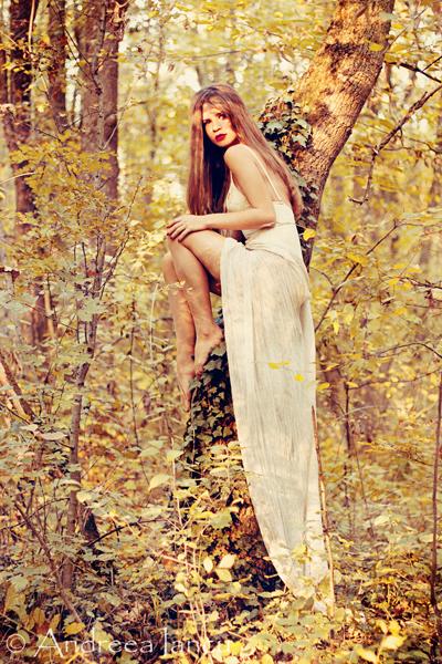 Autumn Fairy by dark3y3s