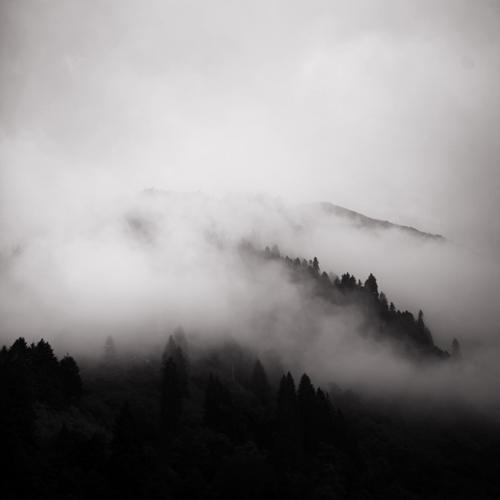 in the mist   2 by selimselimoglu