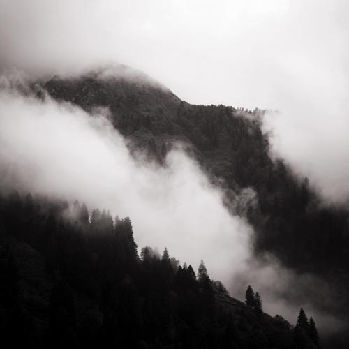 in the mist   4 by selimselimoglu