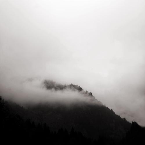 in the mist   6 by selimselimoglu