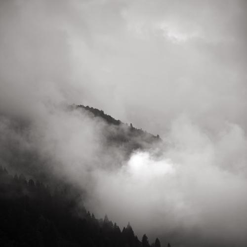 in the mist   7 by selimselimoglu