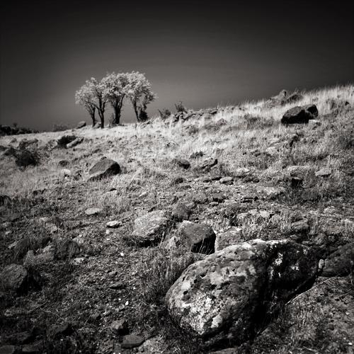 the rock by selimselimoglu