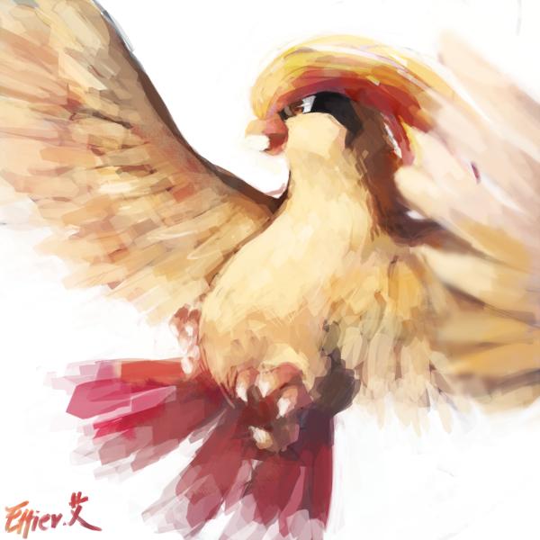 pidgeot by Effier-sxy