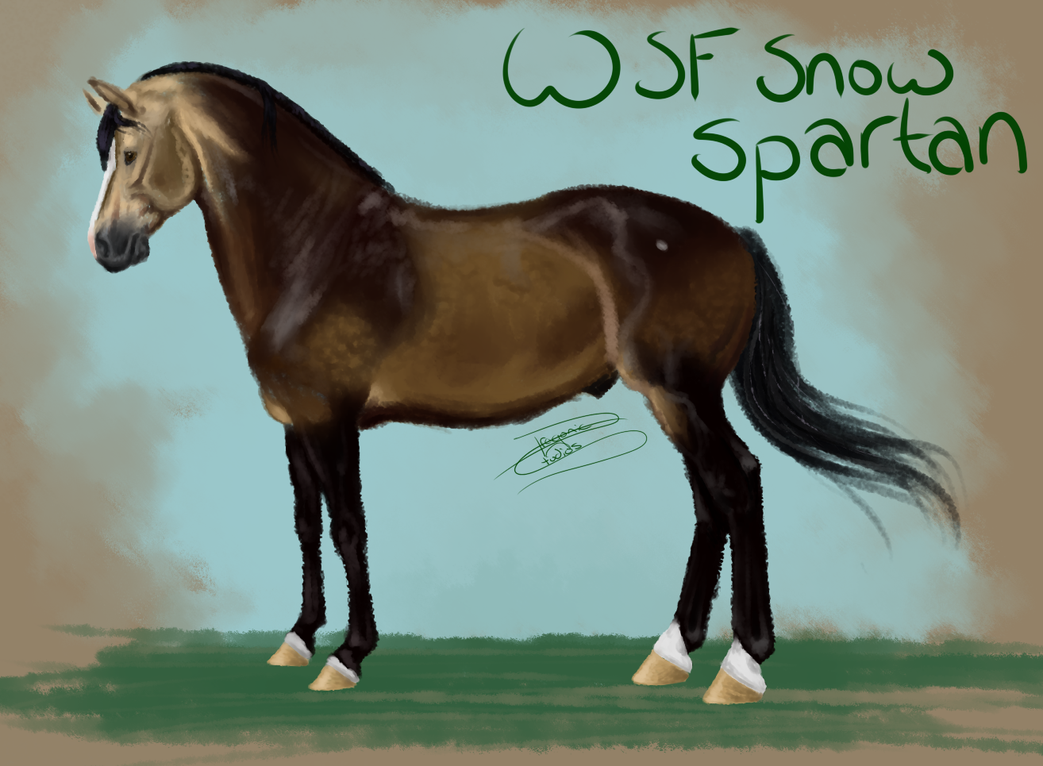 WSF Snow Spartan by DragonicWhispers