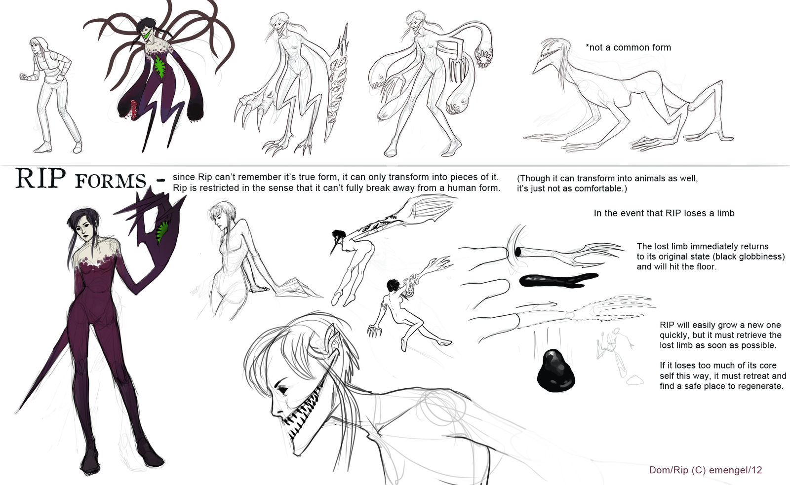 Rip Forms: Reference Sheet by emengel on DeviantArt