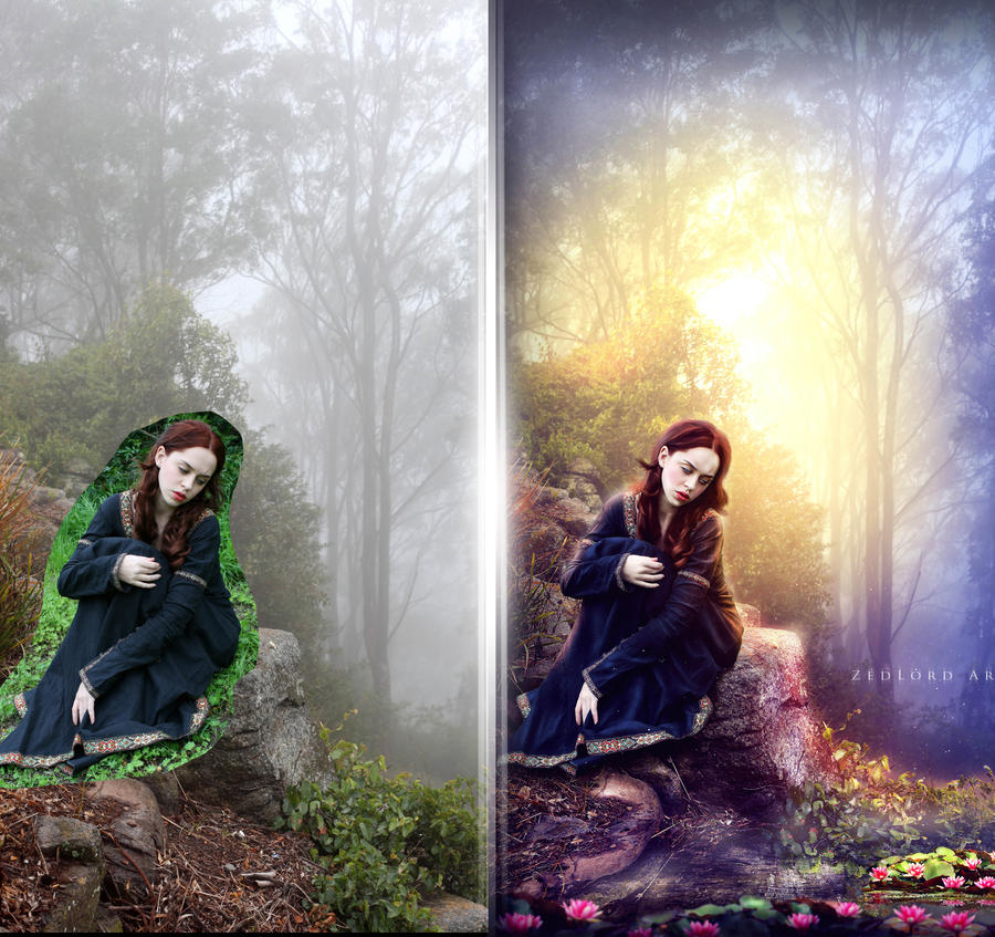 at the pond (before and after) by ZedLord-Art