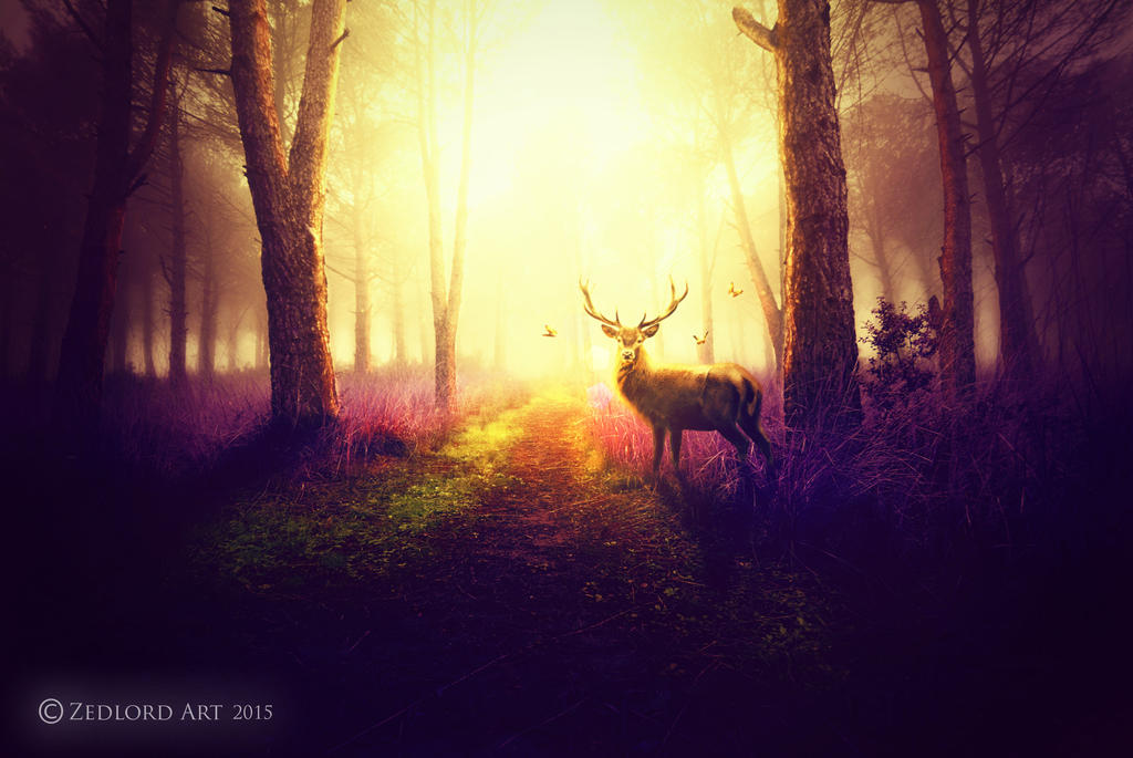Deer In The Forest by ZedLord-Art