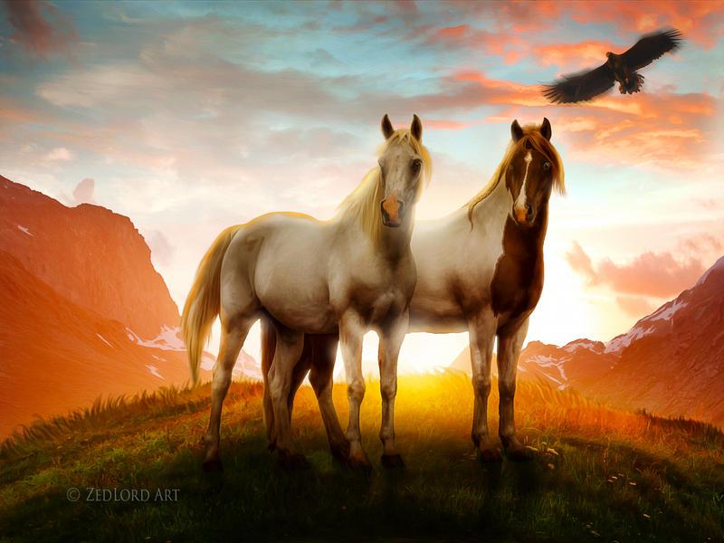 spirit by ZedLord-Art