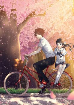 CM: Cherry Blossoms