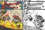 Sensation Comics # 28