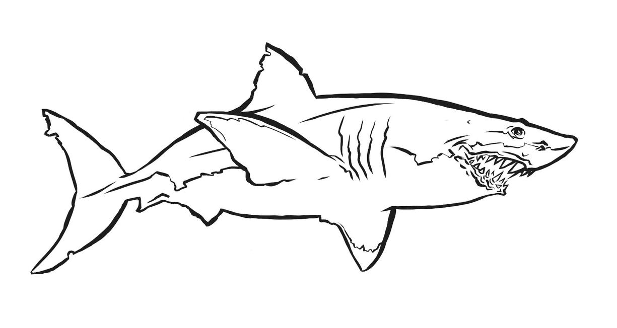 Line Art Shark : Great white shark by ianouterspacechase on deviantart