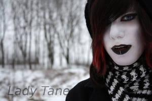 Das Winterdreieck by MyladyTane