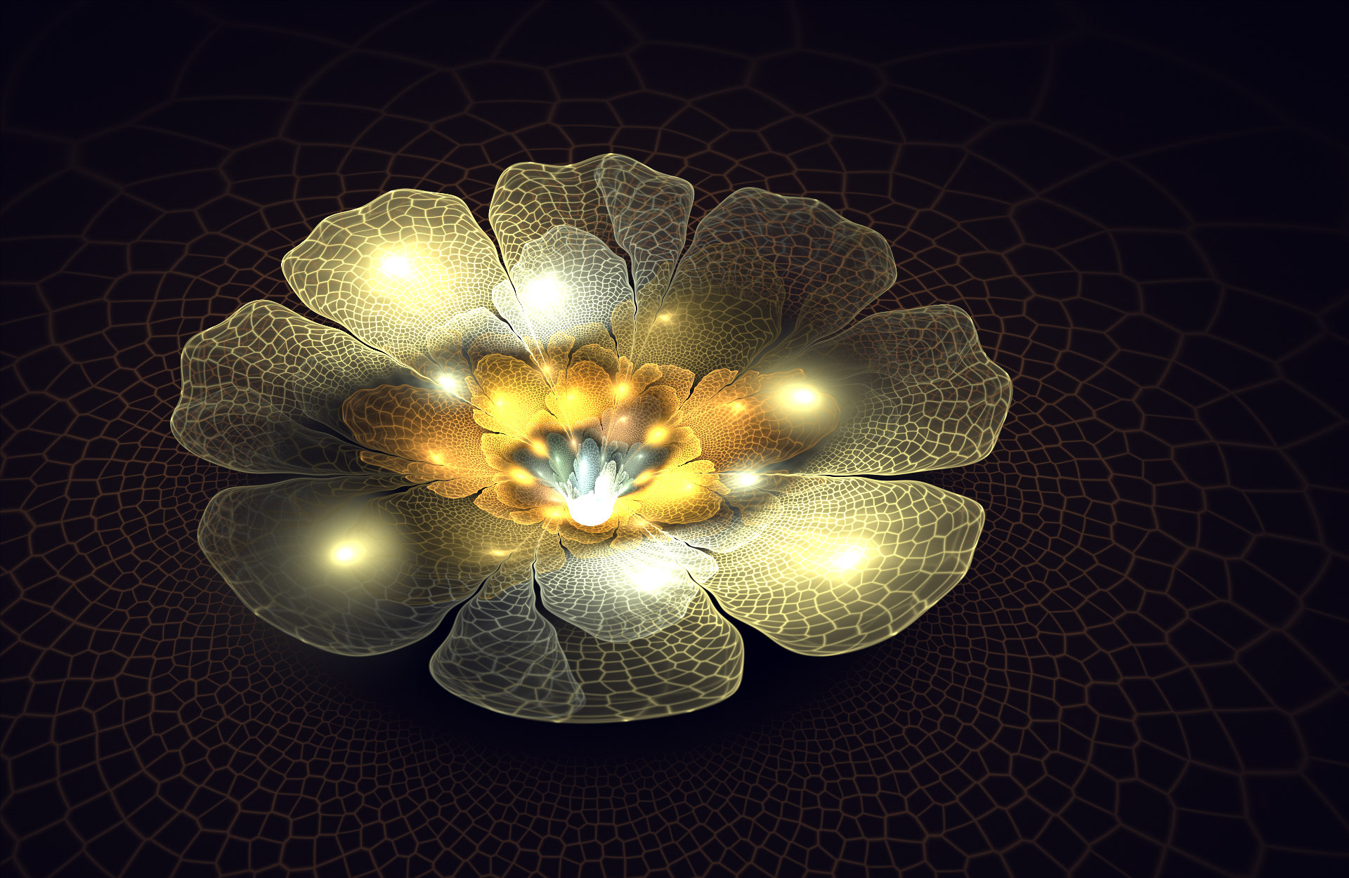 Light flower by FractalDesire