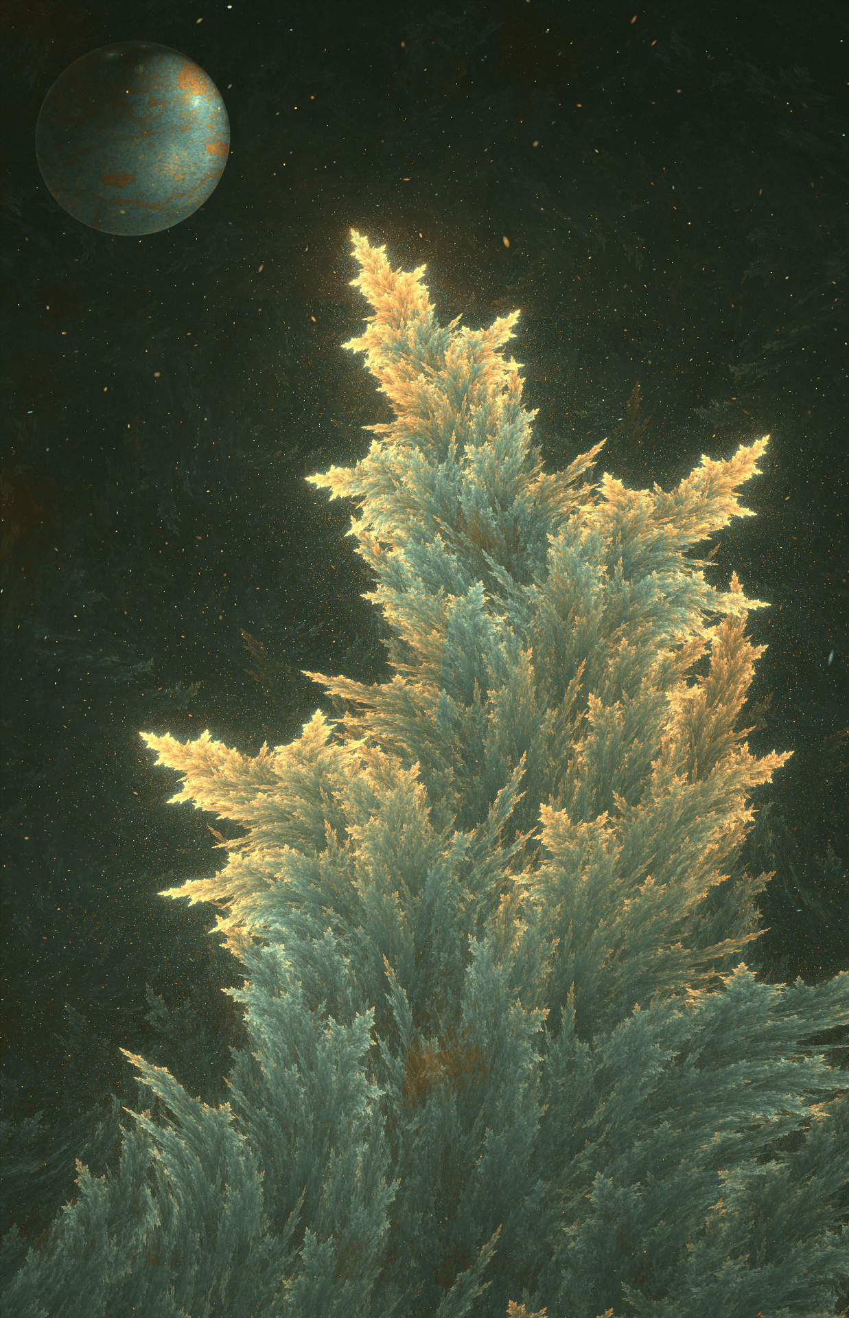 Dreams of a conifer tree at night