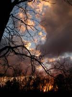 Fire by HollyMarieMa