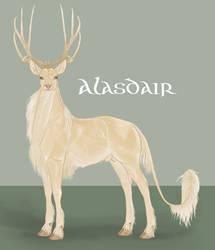 Alasdair | Stag | Herd Member