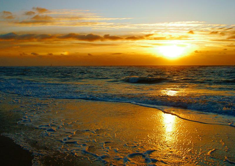 Golden Sea by Dieffi