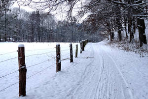 my way into the snow by Dieffi