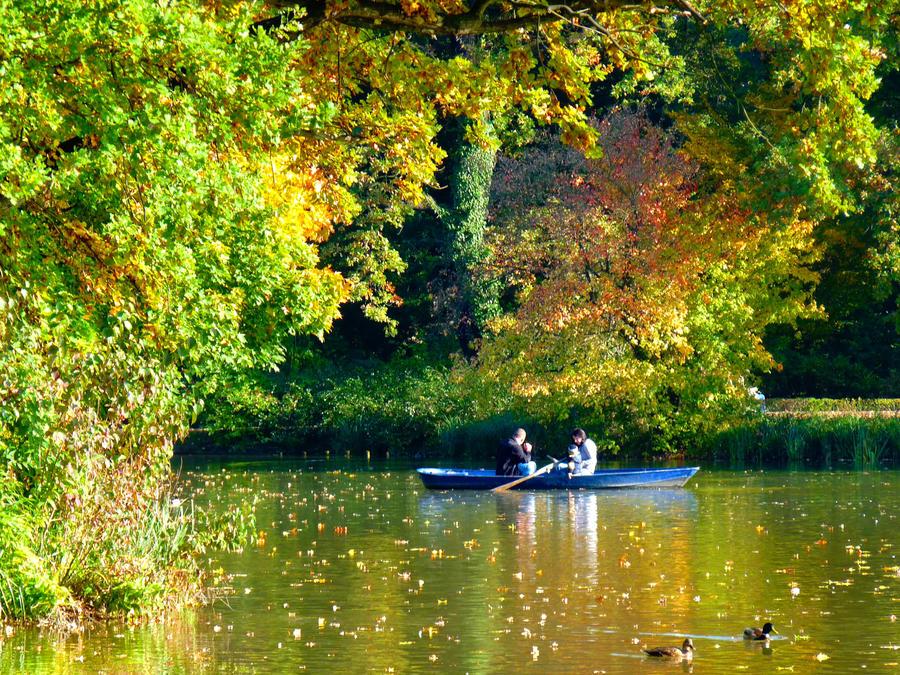 golden light of October 1 by Dieffi