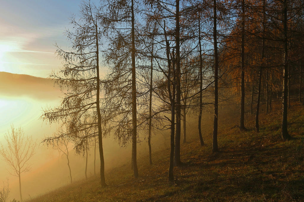 misty moment by Dieffi