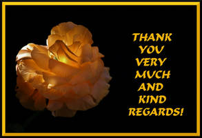 THANK YOU VERY MUCH AND KIND REGARDS - BUTTERCUP