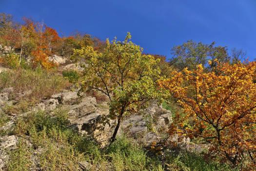 stony fall