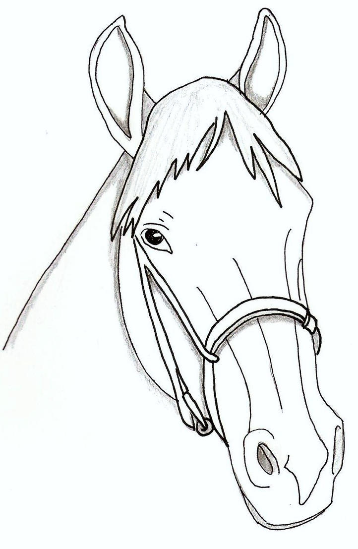 horse face coloring pages - photo#10