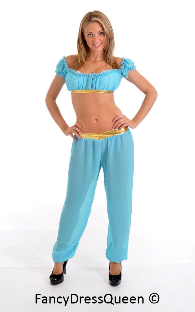 Princess Jasmine Aladdin Cosplay Costume by fancydressqueen ...  sc 1 st  fancydressqueen - DeviantArt & Princess Jasmine Aladdin Cosplay Costume by fancydressqueen on ...
