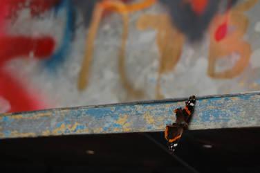 Urban art - photography by matsmats