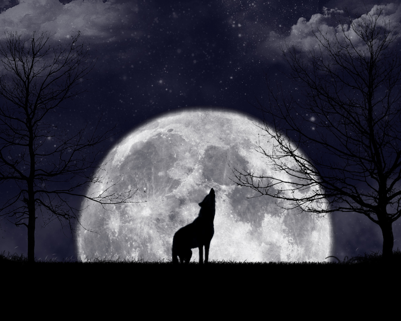 Howling At The Moon by zanardo on DeviantArt